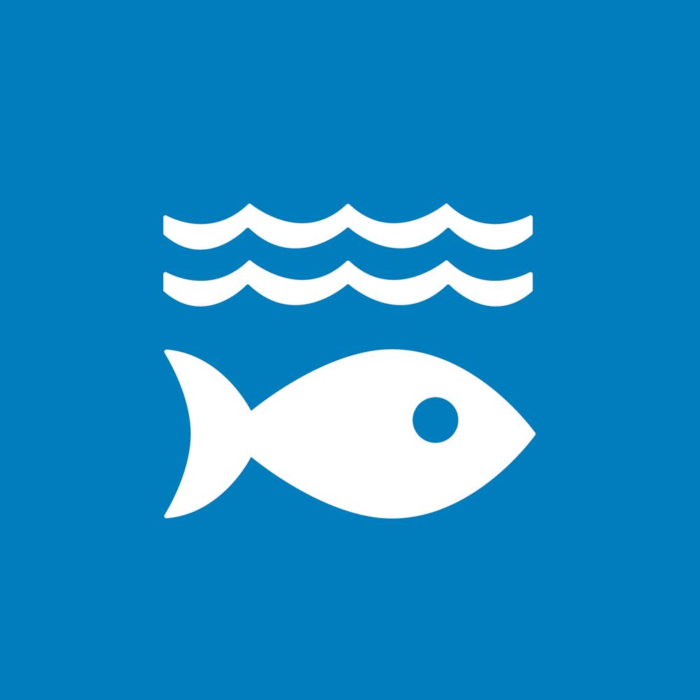 Sustainable Fisheries Challenge