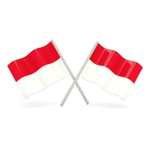 100% Indonesia (Android Challenge)